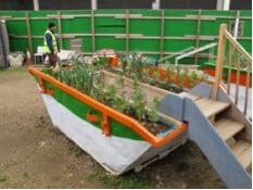 Garden made using a skip bin