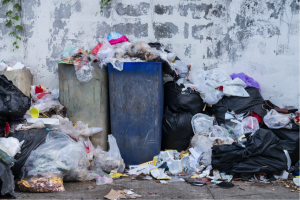 How Hiring A Skip Bin Can Help You To Declutter Your Home Responsibly