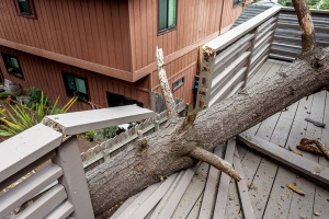7 Storm Clean-up Tips for Your Home
