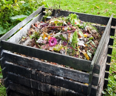 5 Valuable Garden Waste Disposal Tips